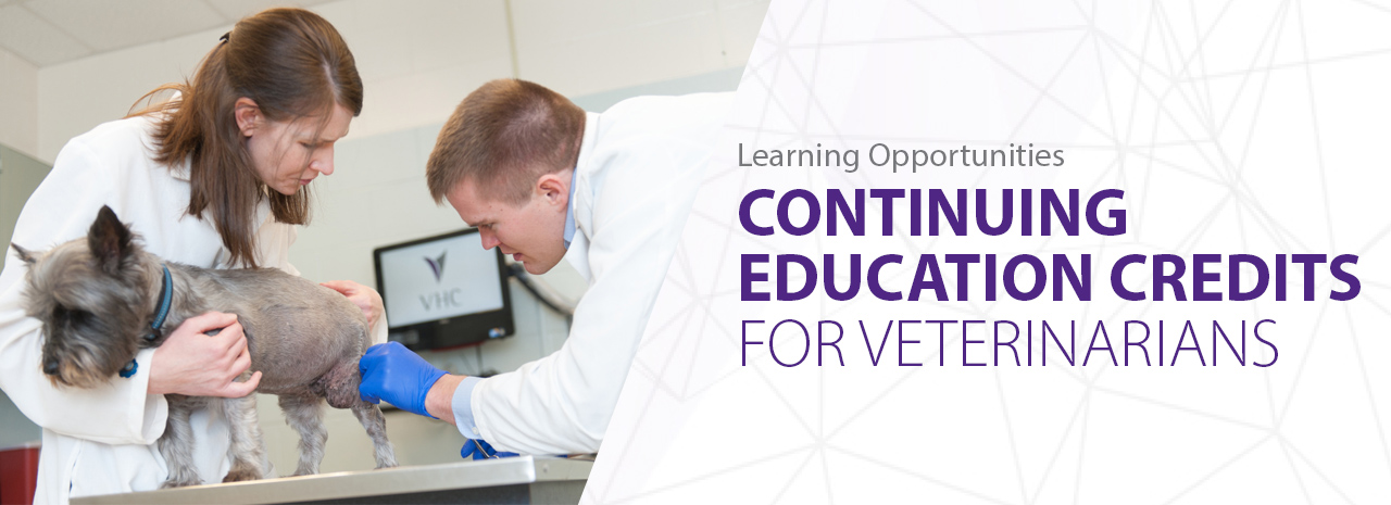 Veterinary Medicine Continuing Education
